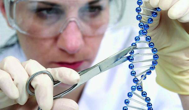 Генная инжинерия: победа технологий над скепсисом