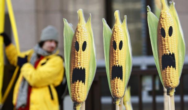 Самые дурацкие мифы о ГМО