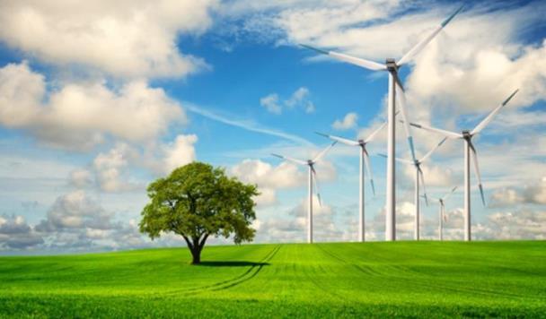 7 стартапов, которые заботятся о Земле
