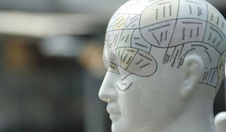10 проверенных способов казаться умнее, чем вы есть