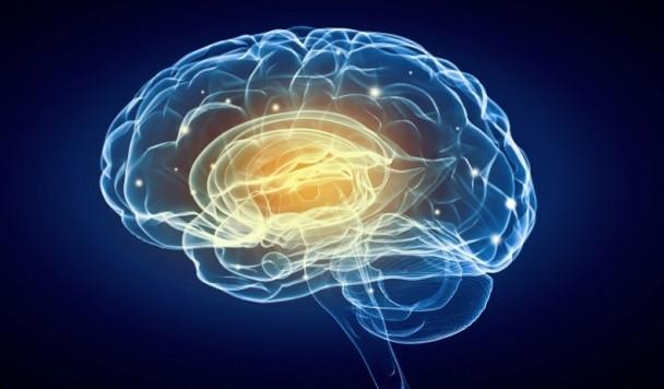 Нейромаркетинг: как маркетологи эксплуатируют науку?