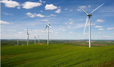 Испанские инвесторы хотят построить в Херсонской области мощный ветропарк