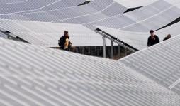 В Одесской области построят три солнечные электростанции общей мощностью 86 МВт