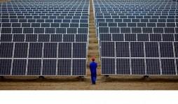Канадская компания построит 5 солнечных электростанций в Украине