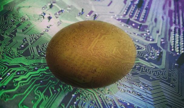 Как птичьи яйца могут помочь в разработке электроники