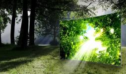Как выбрать телевизор 4К: полезные советы и особенности формата
