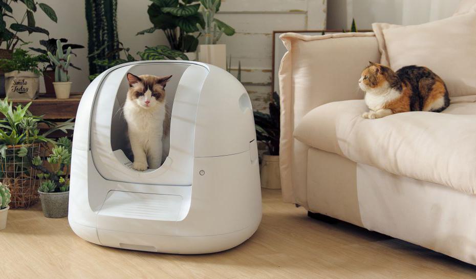 Технологии NASA на страже кошачьего здоровья