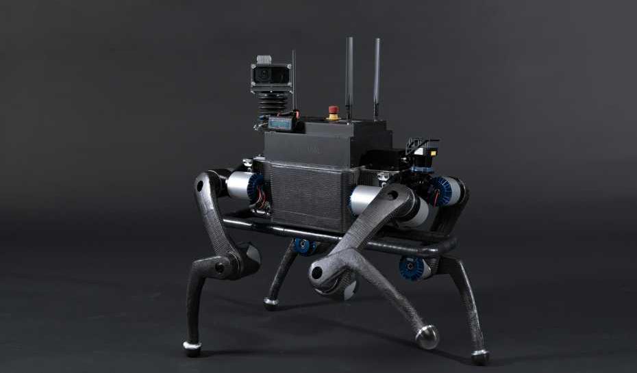 Конвергентная робототехника. Как роботы эволюционируют в животных