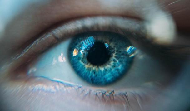 Оптические иллюзии: Как культура влияет на восприятие формы предметов