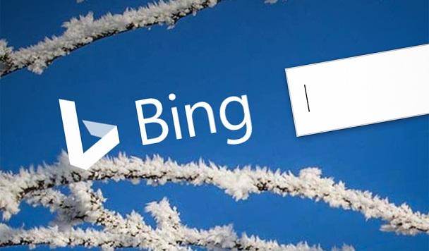 В Китае заблокировали Bing