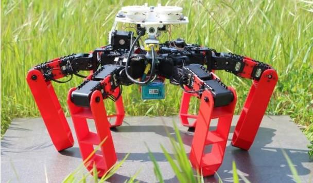 Разработан робот-муравей, ориентирующийся в пространстве по небу