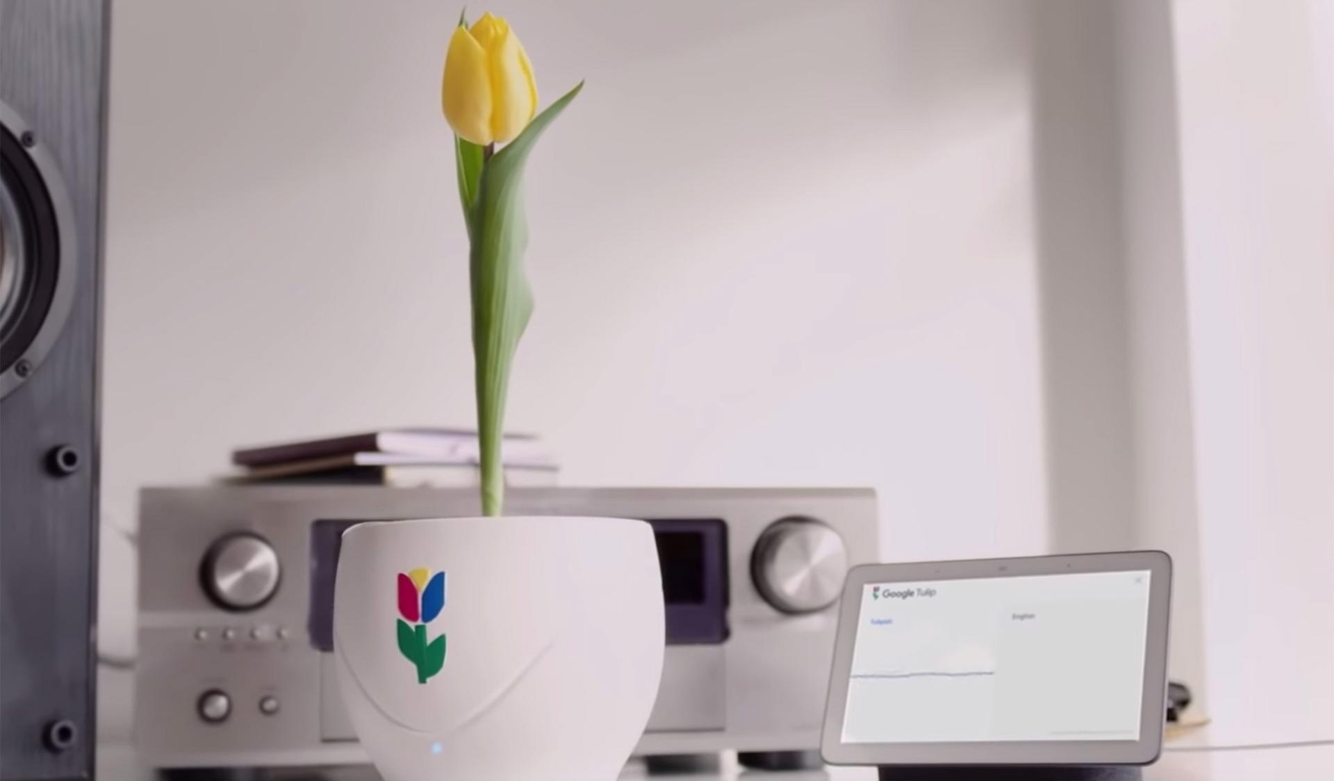 Как шутили первого апреля IT-гиганты