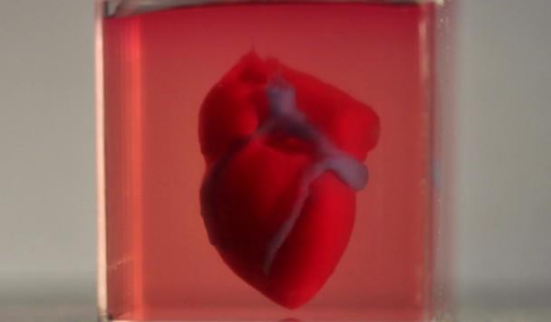 Прорыв в медицине: Ученые распечатали живое сердце из клеток пациента