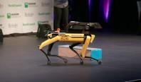 Boston Dynamics представила первого робота-пса для продажи