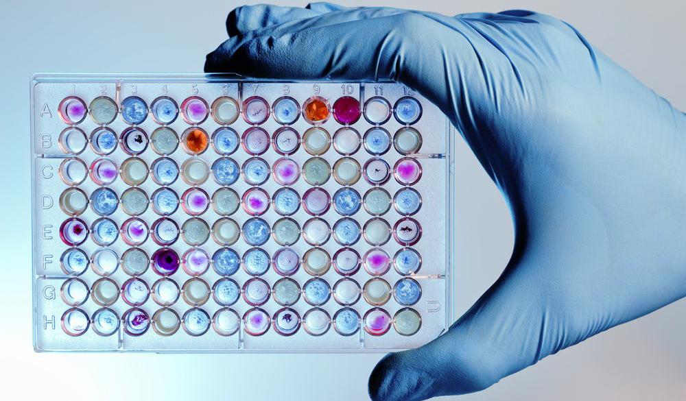 Разработан способ записи данных на органические молекулы