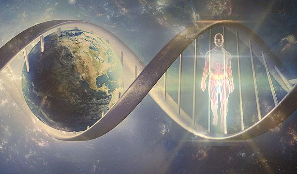 Как лидеры мира технологий планируют достичь бессмертия