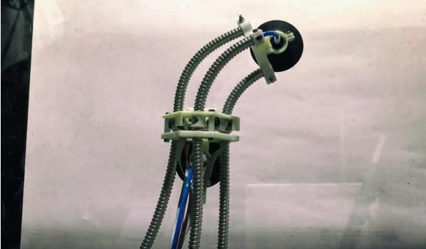 Разработан робот-пиявка, способный карабкаться по стенам