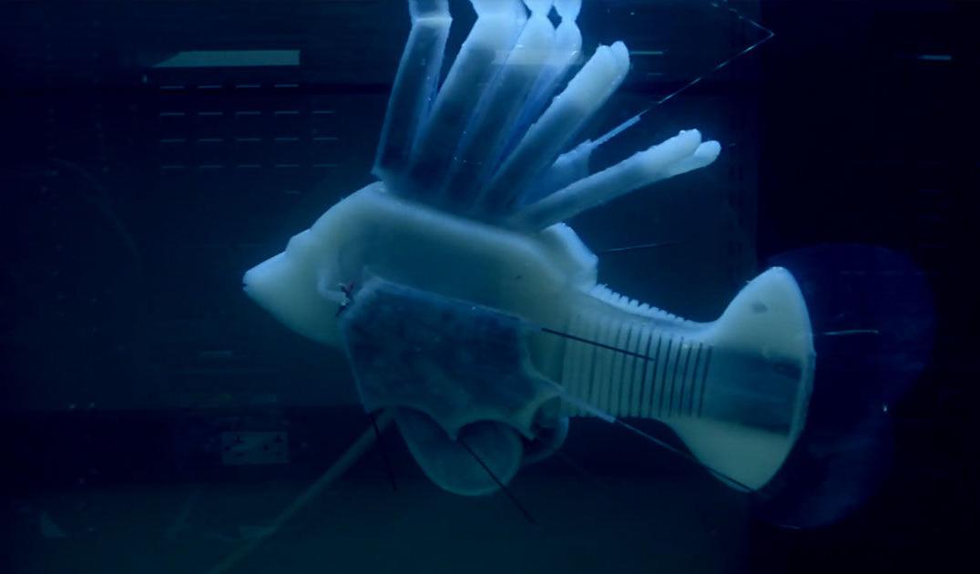 Создан первый робот, использующий для работы искусственную «кровь»