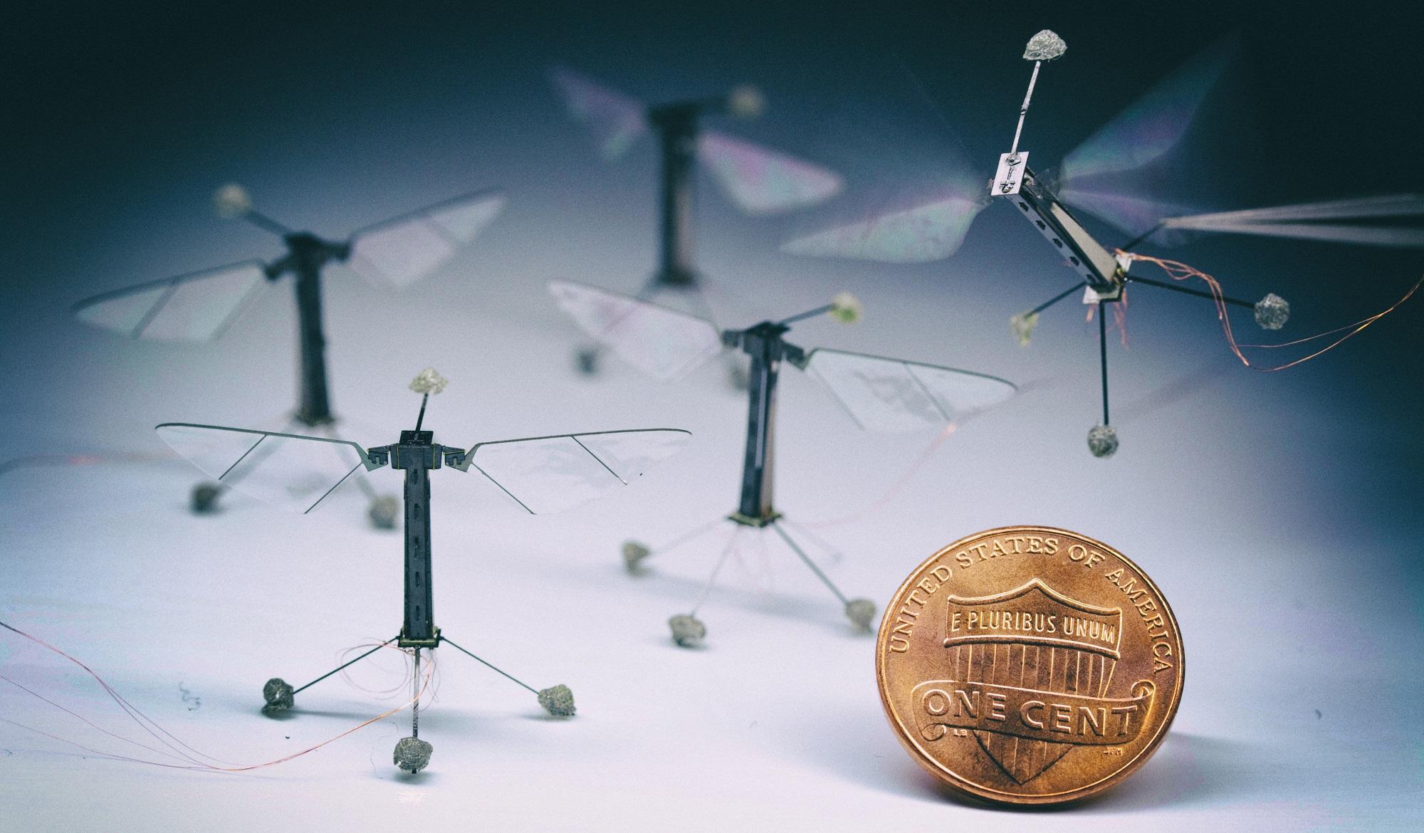 Миниатюрный робот-пчела летает, используя лишь энергию солнца