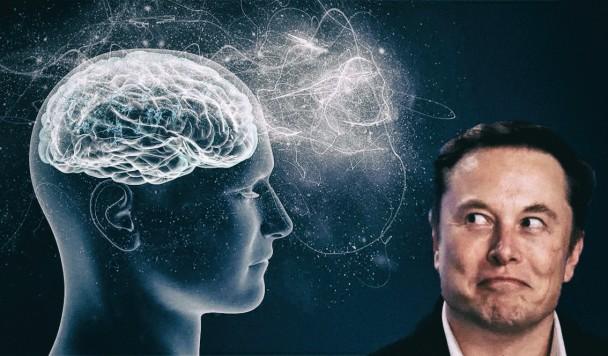 Люди умоляют Илона Маска просверлить им череп