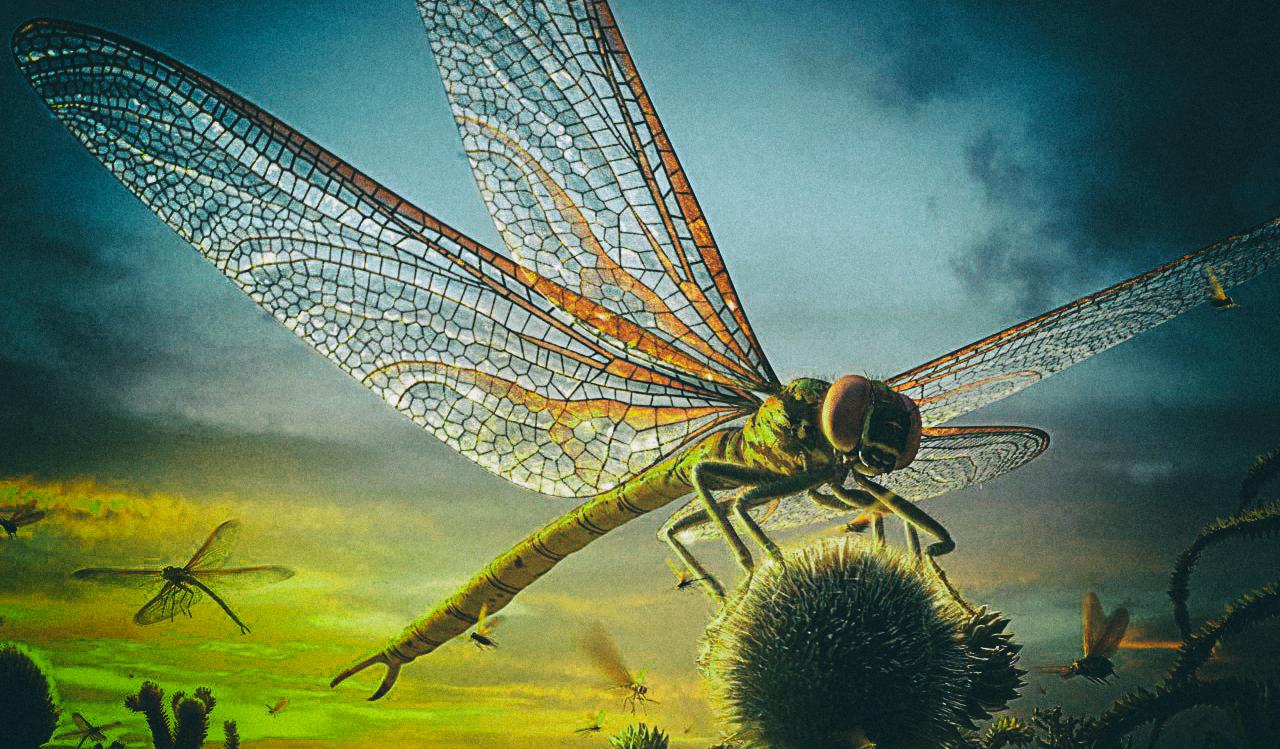 Как стрекозы помогают создавать противоракетное вооружение