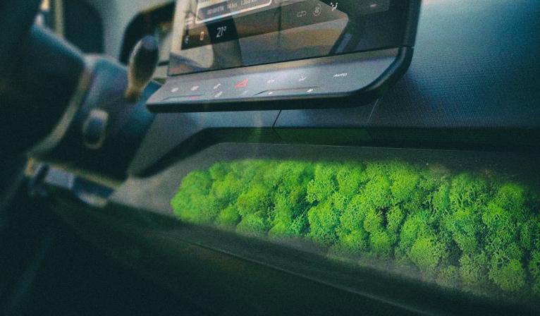 Представлен электромобиль, в котором для очистки воздуха используется мох