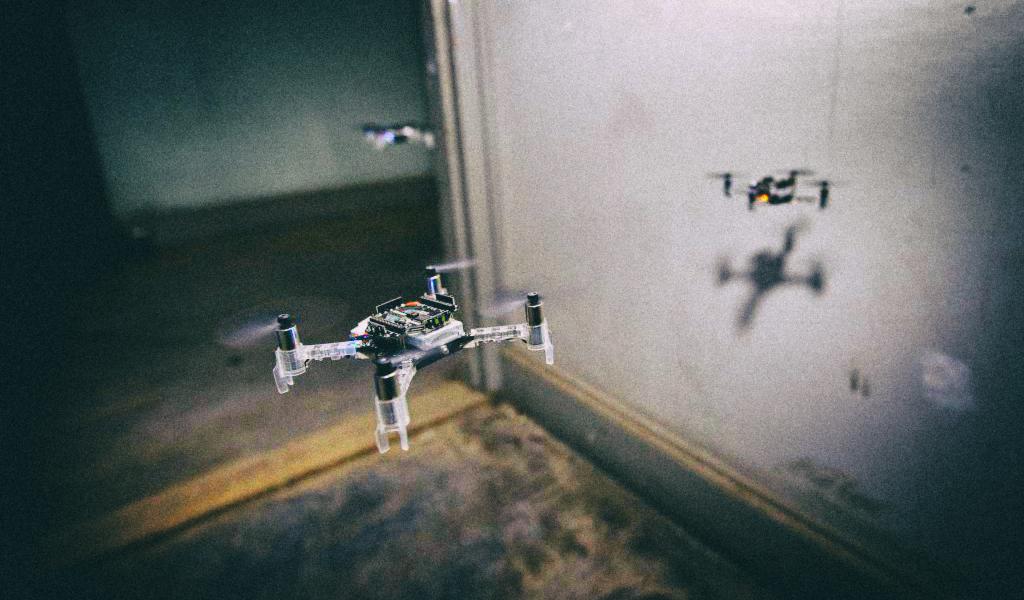 Рои дронов с интеллектом насекомых будут спасать человеческие жизни
