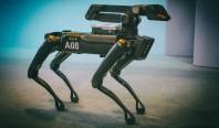 Boston Dynamics убеждает всех, что их роботы не представляют угрозы