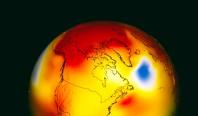 2019 официально стал вторым самым жарким годом за последние столетия