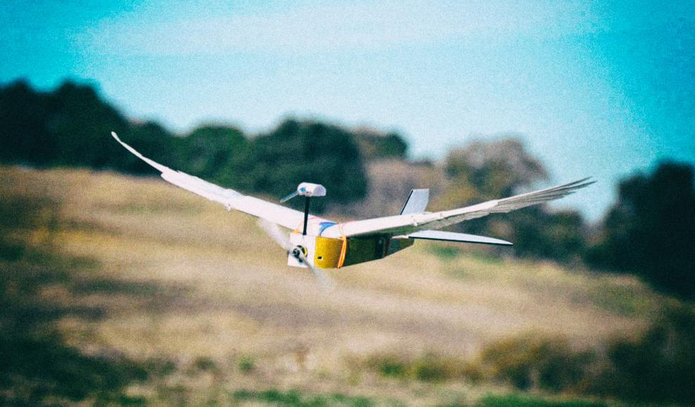 Дрон, скопированный с живых птиц, летает лучше других машин