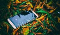 Выгодно ли заменять сломанный экран на вашем телефоне?