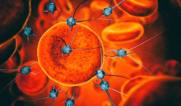 Ученые впервые регенерировали живой хрящ при помощи наноботов
