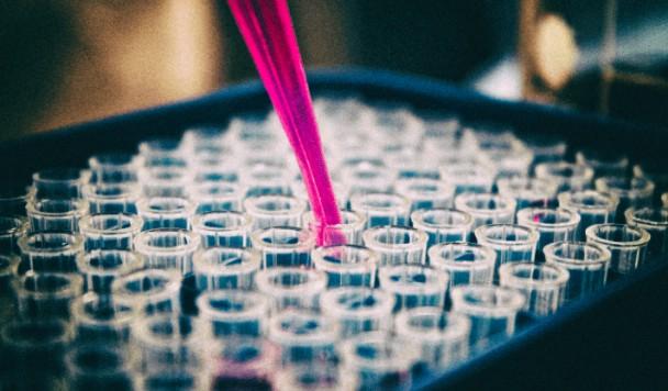 Как эпидемия коронавируса меняет науку и образование