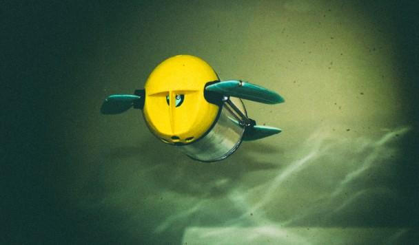 Роботизированная черепаха будет инспектировать рыбные фермы