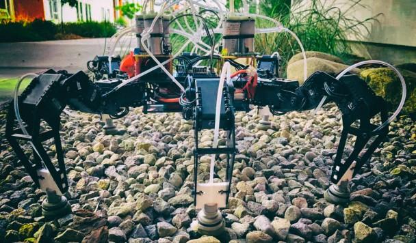 Кофе помогает роботам быстрее передвигаться на ногах