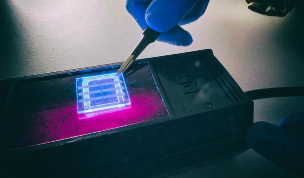 Изобретены светодиодные дисплеи из человеческих волос