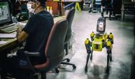 Робопёс Spot начал работу на заводах Ford