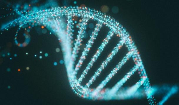 Курьез: Microsoft Excel вынудил ученых менять названия генов