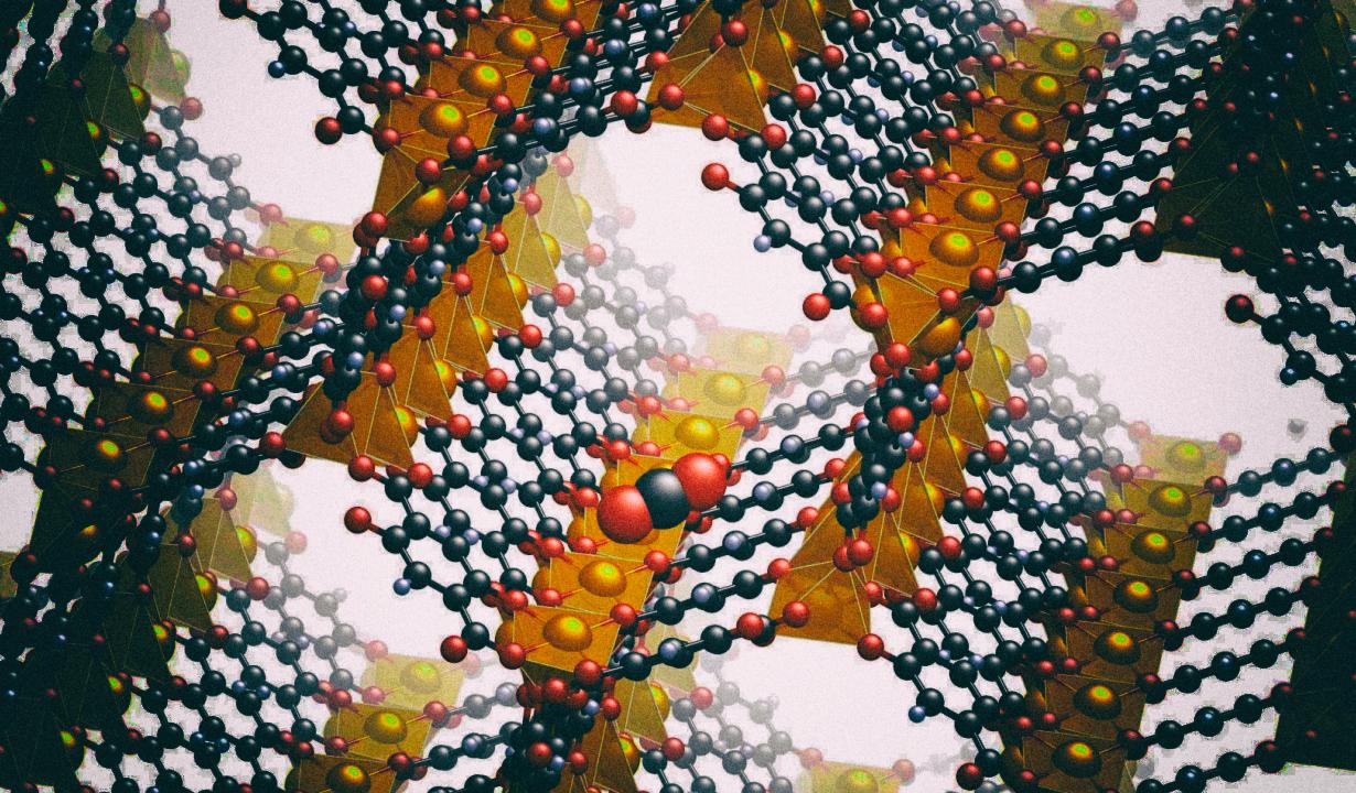 Ученые создали программируемые синтетические молекулы