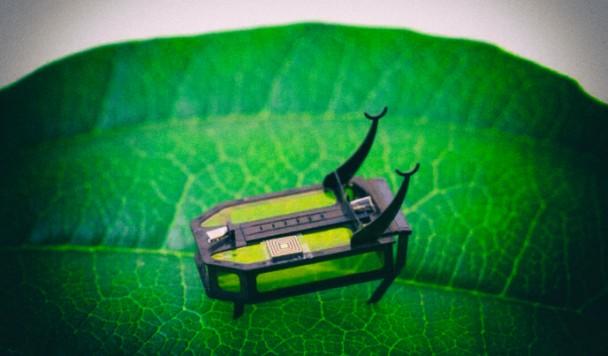 Создан насекомоподобный робот, питающийся алкоголем
