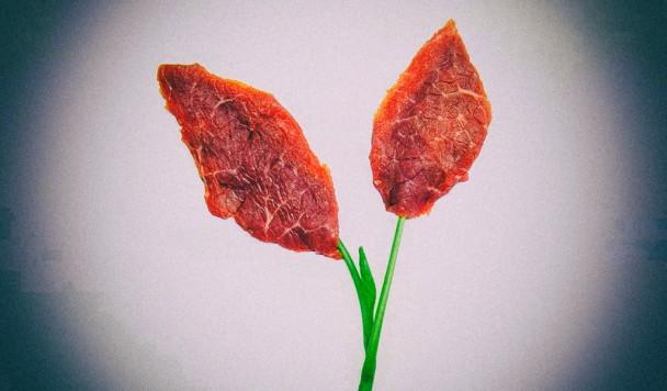 Мясо из пробирки можно генетически улучшить питательными веществами