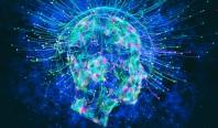"""Нейробиолог: """"Сознание человека может быть энергетическим полем"""""""