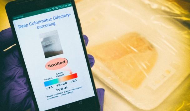 """""""Электронный нос"""" позволяет находить испорченное мясо в магазинах"""