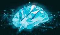 Искусственный интеллект помог ученым понять, как мозг рождает мысли