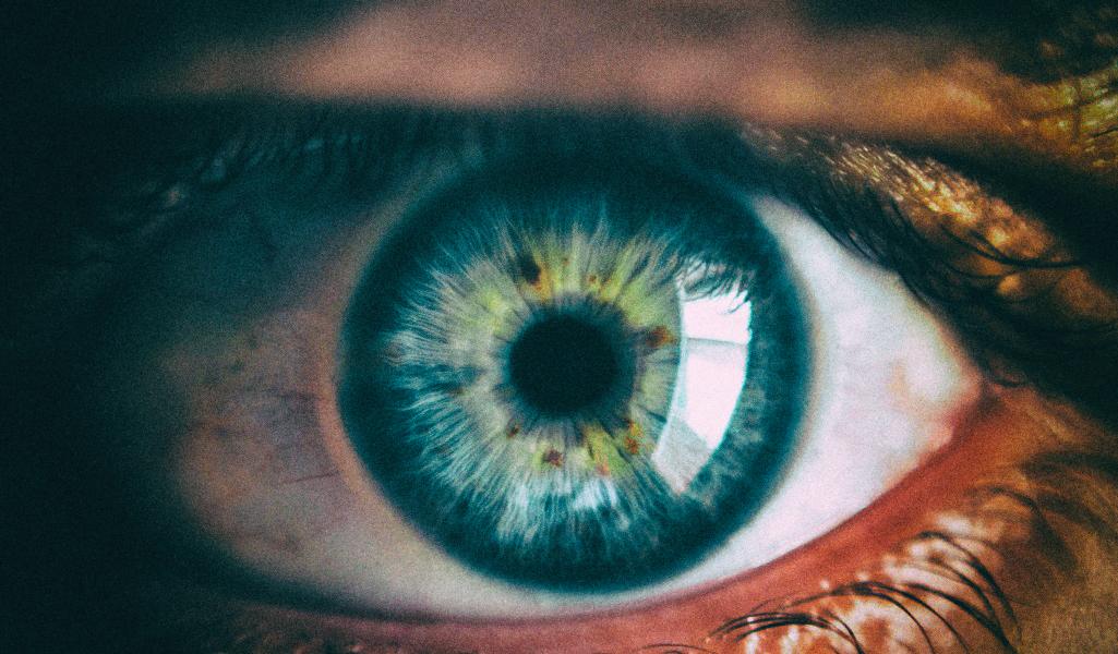 Искусственная биогибридная сетчатка сможет возвращать зрение слепым