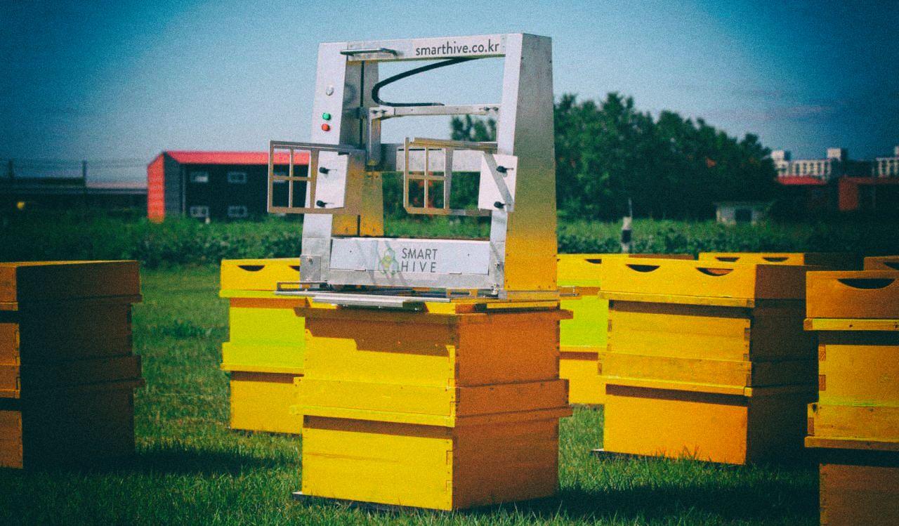 Создан первый автономный робот-пасечник