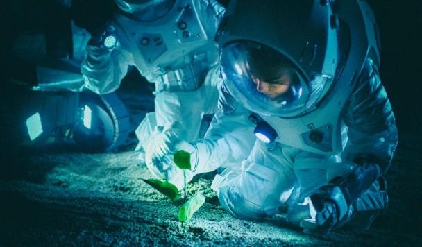 NASA проводит конкурс на выращивание космических продуктов