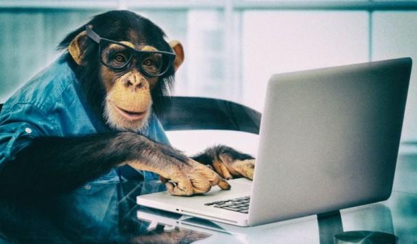 Илон Маск вживил чип в голову обезьяне и научил ее играть в видеоигры
