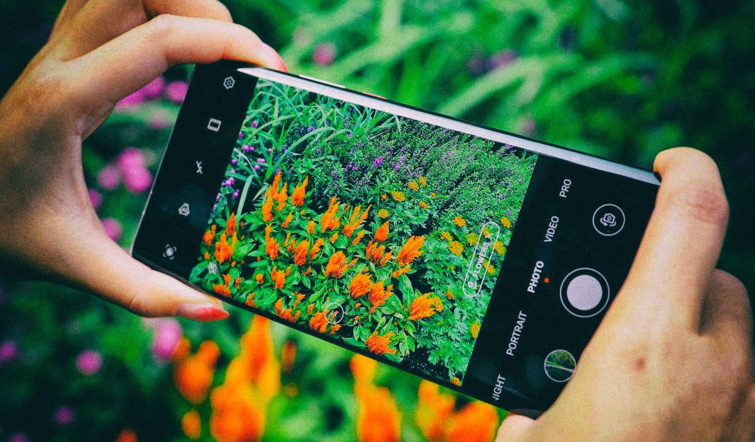 Смартфон Huawei P50 может стать лучшим камерофоном в мире
