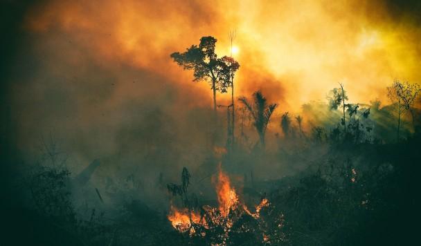 Исследование: Лишь 3% земной суши остались нетронутыми человечеством